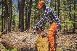 Chainsaw Safety Awareness Training